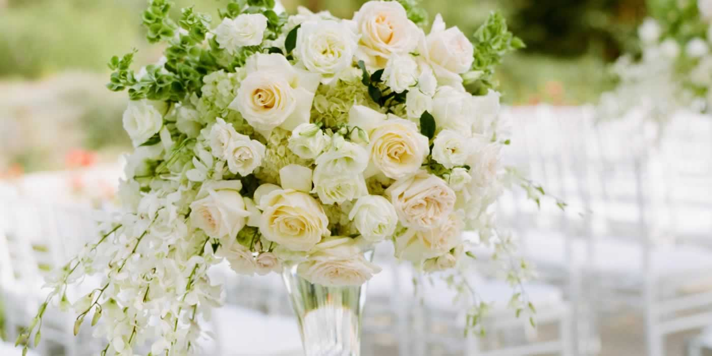 Quintas para Casamentos